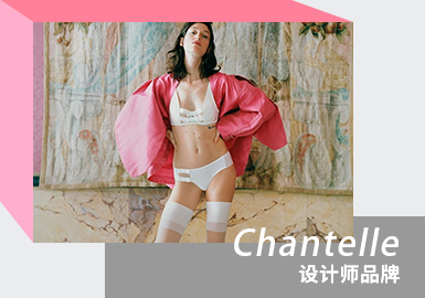 Pioneer Design -- The Analysis of Chantelle The Women's Underwear Designer Brand