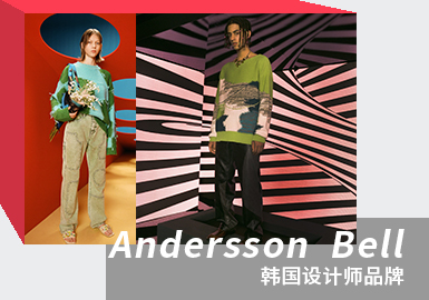 A Rhapsody of Color -- The Analysis of Andersson Bell The Designer Brand